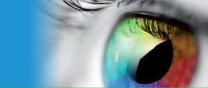 AB Reflex - eye