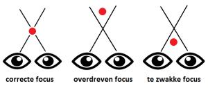 Dyslexie Training - focus2